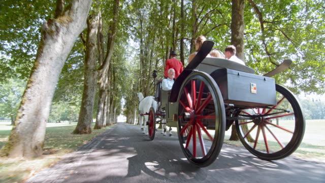 TS Family enjoying a horse carriage ride through avenue video