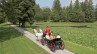 AERIAL Family enjoying horse carriage ride around the lake video