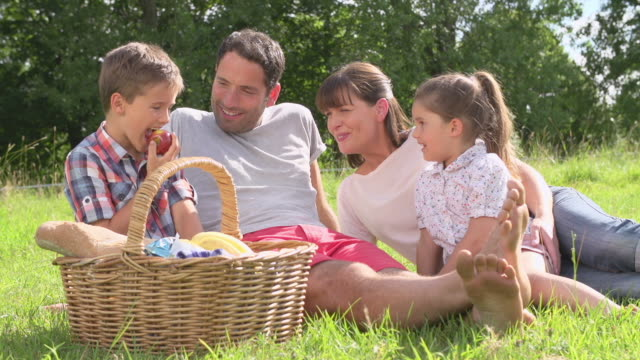 Family Enjoying Summer Picnic In Countryside video