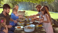 DS Family enjoying their lunch outside at the picnic table video