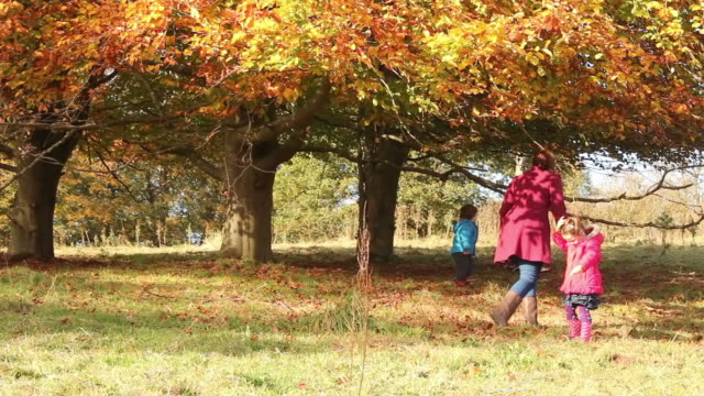 Family Fun In The Autumn Time video