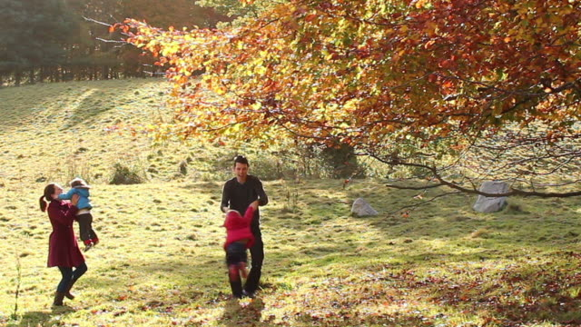 Family Fun Under A Golden Tree During Fall video