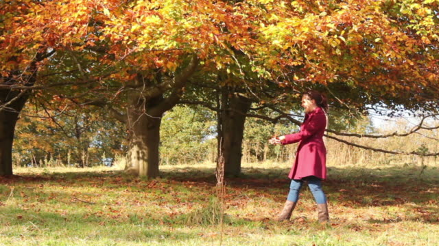 Family Fun With Freshly Fallen Leaves video