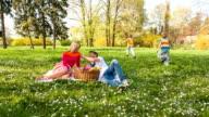 Family having a picnic in park video