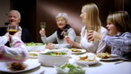 Family having a toasting at dinner video