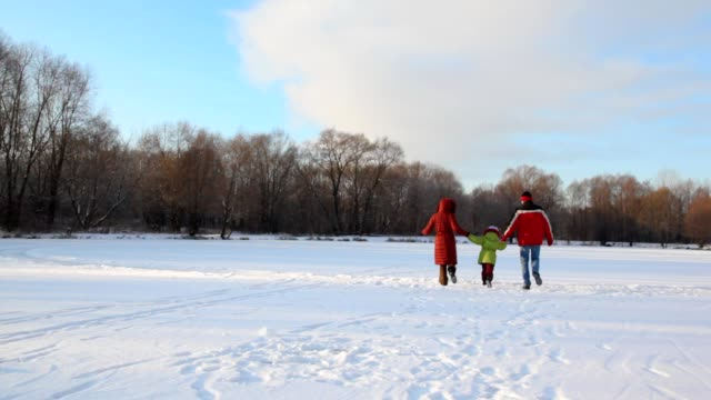 Family having joined hands runs on snowfield video