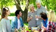 Family having picnic in the park video