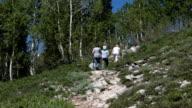 Family hike mountain trail away P HD 0592 video