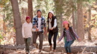 Family in forest step over fallen tree, front view, close up video