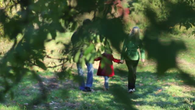 JIB: Family in park video