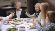 Family making a toast at the dinner table video