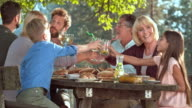 Family members clinking glasses at a picnic video