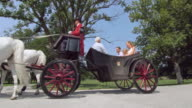 DS Family on a horse drawn carriage ride through park video