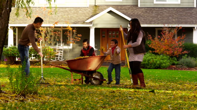 Family outdoors raking leaves in Autumn video