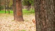 Family peeking behind tree video