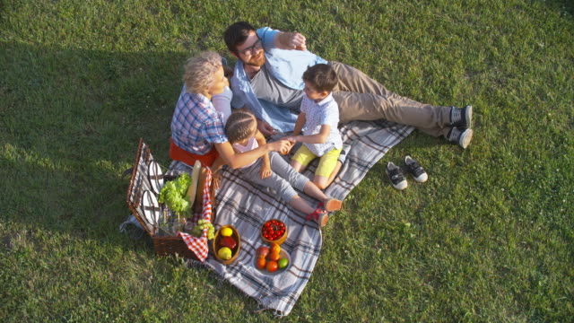 Family Picnic on Summer Day video