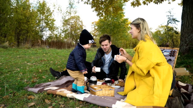 Family picnicking in the park video