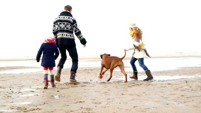 WS Family playing football on beach video