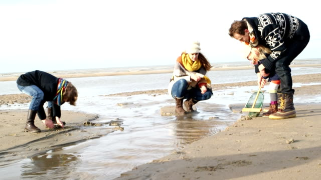 WS Family playing with fishing net on beach video