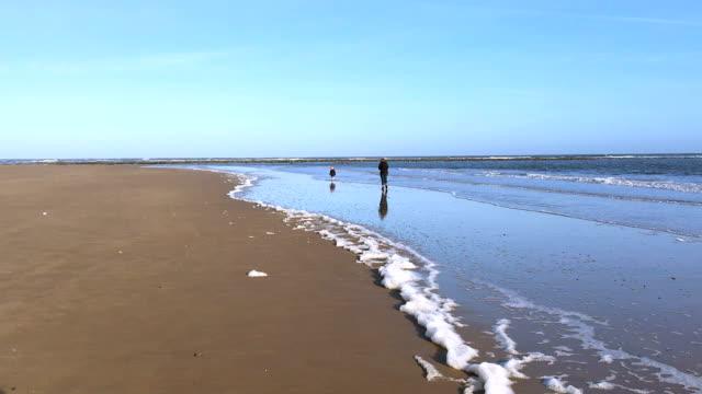 Family plays along sea shore, waves lap sandy beach video