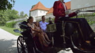 DS Family riding in a horse drawn carriage video
