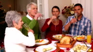 Family toasting with champagne at Christmas video