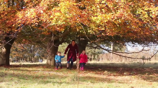 Family Under A Tree In The Autumn Time video