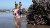 Family walking at beach video