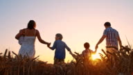 SLO MO Family walking through wheat field at sunset video