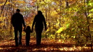 Family Walking Through Woods During Autumn in Michigan video