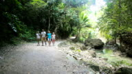 family walks on the walkway in rainforest video
