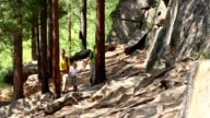 Family walks through forest video