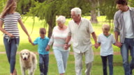 Family with dog in the park video