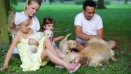 Family with puppies in park video