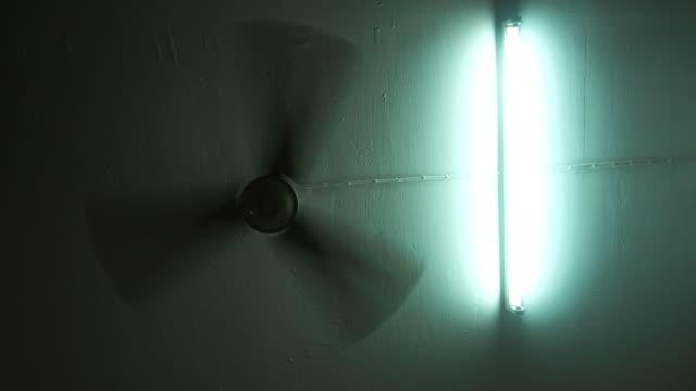 Fan and bulbs. video