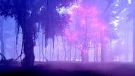 Fantasy tree with magical lights in misty night forest video