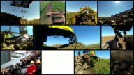 Farm Equipment Harvesting Sugar Beet video