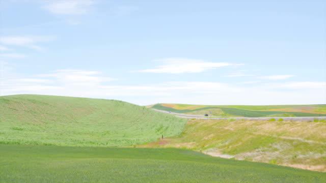 Farm Fields in Idaho - 2 Shots video