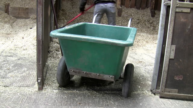 Farm girl cleaning stable video
