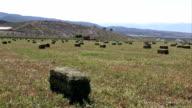 Farm hay bales in field video
