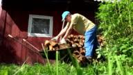 Farm worker man boy unload firewood wood from rusty barrow cart. FullHD video