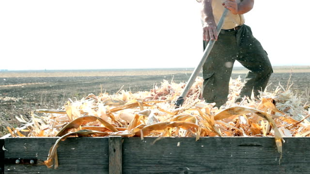 Farmer at Work video