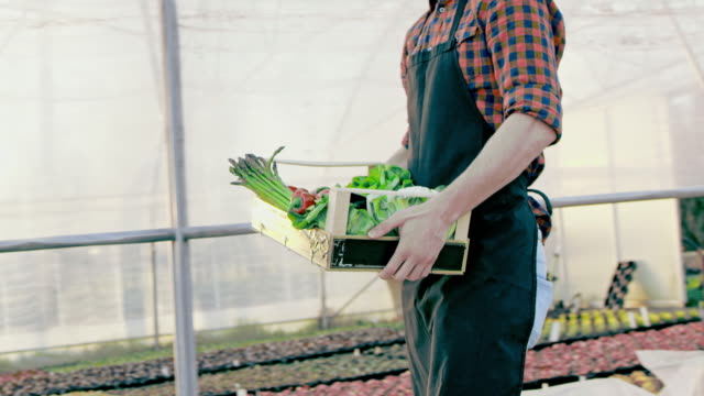 SLO MO Farmer carrying a crate full of vegetables video