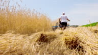 LS Farmer Cutting The Barley With Reaper-Binder video