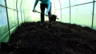 Farmer dig ground in hothouse and check soil fertility. video