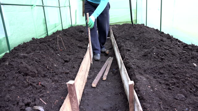 Farmer hammer stake to enclose greenhouse path with planks. video