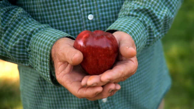 Farmer Holding Apple in Hands HD/SD video