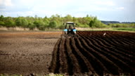 Farmer in tractor and birds preparing land for sowing video