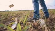 LA Farmer losing money video