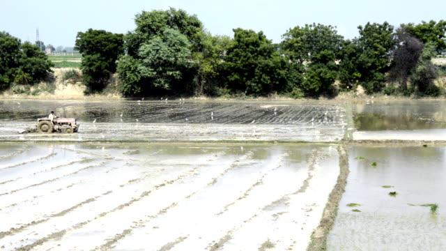 Farmer Plowing Field Using Tractor video